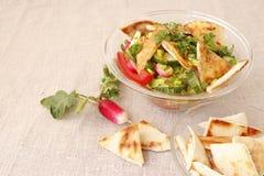 Cocina libanesa, fattush de la ensalada Foto de archivo