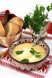 Cocina tradicional de Rumania: sopa de la tripa foto de archivo