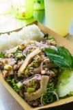 Cocina tradicional de Tailandia, ensalada picante del cerdo del Tailandés-estilo del noreste imagen de archivo libre de regalías