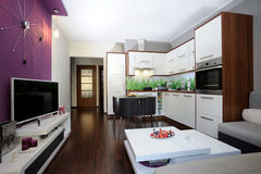 Cocina y sala de estar Fotos de archivo libres de regalías