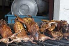 Cocinar conejillos de Indias en Banos, Ecuador Fotos de archivo libres de regalías