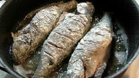 Cocinar crudo fresco frita del río almacen de metraje de vídeo