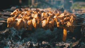 Cocinar kebabs en los pinchos sobre un fuego en naturaleza Cámara lenta almacen de video
