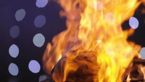 Cocinar la carne en el fuego almacen de metraje de vídeo