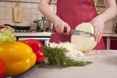 Cocinar la cena Foto de archivo libre de regalías