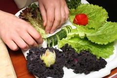 Cocinar la ensalada Foto de archivo