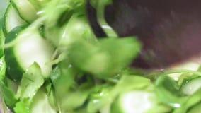 Cocinar la ensalada del arugula y del pepino metrajes