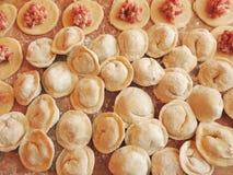 Cocinar las bolas de masa hervida caseras de la carne Imagenes de archivo