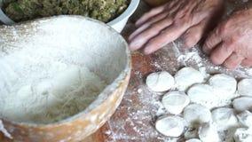 Cocinar las bolas de masa hervida chinas almacen de video