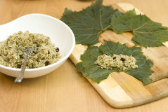 Cocinar las hojas de uva rellena turcas del alimento Imagen de archivo libre de regalías