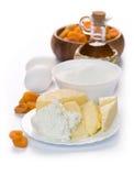 Cocinar los molletes del queso del albaricoque secado imagen de archivo