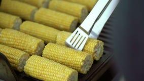 Cocinar maíz en parrilla metrajes