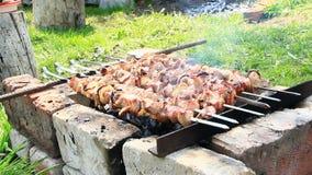 Cocinar pedazos de carne en el primer del fuego Carne de cerdo cocinada Almuerzo de la barbacoa metrajes