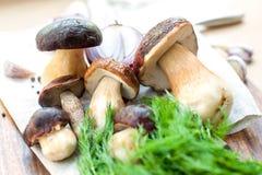 Cocinar setas sopa-deliciosas del porcini en fondo de madera B Fotos de archivo
