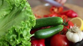 Cocinar verduras metrajes