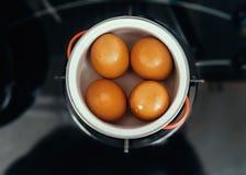 Cocine los huevos Imagenes de archivo