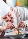 Cocinero Cocinero Cooking Cocinero que adorna el plato Cocinero que prepara una comida El cocinero en cocina del hotel o del rest foto de archivo libre de regalías
