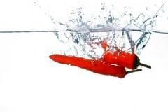 Cocinero de la pimienta de chile Imagen de archivo libre de regalías