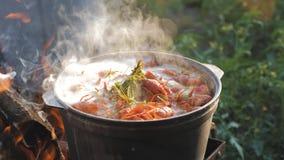Cocinero de los cangrejos en agua con las especias y las hierbas Cangrejos hervidos calientes Primer de la langosta Visi?n superi almacen de video