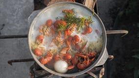Cocinero de los cangrejos en agua con las especias y las hierbas Cangrejos hervidos calientes Primer de la langosta Visi?n superi metrajes