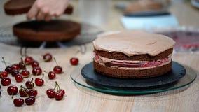 Cocinero de pasteles de sexo femenino irreconocible que exprime la crema del chocolate en el pastel de capas apetitoso en cocina almacen de metraje de vídeo