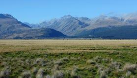 Cocinero del montaje en Nueva Zelandia Foto de archivo