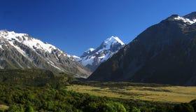 Cocinero del montaje en Nueva Zelandia Imagen de archivo