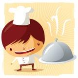 Cocinero - disco de plata Fotografía de archivo libre de regalías
