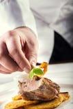 Cocinero en cocina del hotel o del restaurante que cocina, solamente manos Foto de archivo libre de regalías