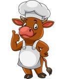 Cocinero feliz de la vaca de la historieta que da los pulgares para arriba ilustración del vector
