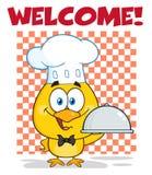 Cocinero feliz Yellow Chick Cartoon Character Holding un disco de la campana de cristal que sostiene un disco Fotos de archivo