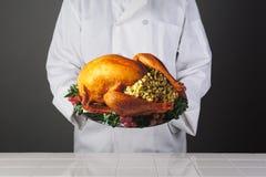 Cocinero Holding Thanksgiving Turkey en el disco Fotos de archivo libres de regalías