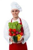 Cocinero joven que sostiene el cuenco de las verduras fotografía de archivo libre de regalías