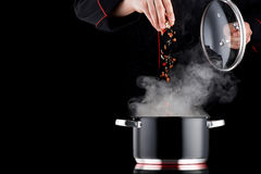 Cocinero moderno que añade la especia a cocer el pote al vapor Imagenes de archivo