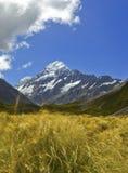Cocinero Nueva Zelandia del Mt Foto de archivo libre de regalías