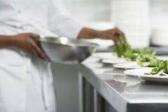 Cocinero Preparing Salad Fotografía de archivo
