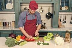 Cocinero que cocina receta vegetariana Delantal del desgaste del cocinero del hombre que cocina la cocina Receta vegetariana del  fotografía de archivo