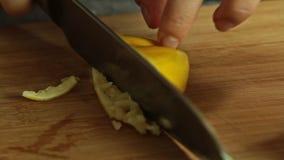 Cocinero que cocina y que condimenta los pescados de color salmón con arroz y el pepino metrajes