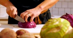 Cocinero que corta la col púrpura en cocina del café metrajes