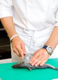Cocinero que corta los pescados Imagenes de archivo