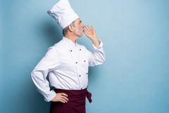 Cocinero, cocinero que hace gesto delicioso sabroso por los fingeres que se besan Cocinero de sexo masculino barbudo confiado en  fotografía de archivo libre de regalías