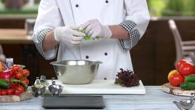 Cocinero que rasga lechuga almacen de video