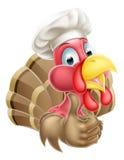 Cocinero Turkey de la historieta Foto de archivo libre de regalías