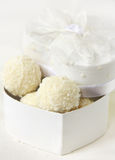 Cocinut candies in box. Over white stock image