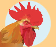 . Image of head of poultry of with a scallop vector illustration