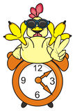 Cock with alarm clock. Cock in sunglasses sit top on a alarm clock and showing gesture peace Stock Images