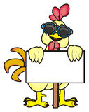 Cock with blank plate. Cock in sunglasses hold in his hands an empty plate Stock Images