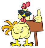Cock with clean plate. Cock in sunglasses hold a clean wooden plate Royalty Free Stock Image