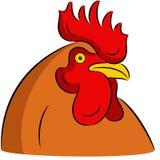 Cock head Stock Photos
