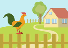 Cock rooster farm fence flat design cartoon vector animals birds Stock Photos